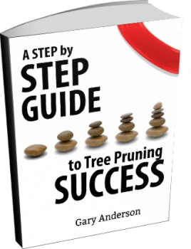 Step By Step Guide to Perth Tree Pruning Success